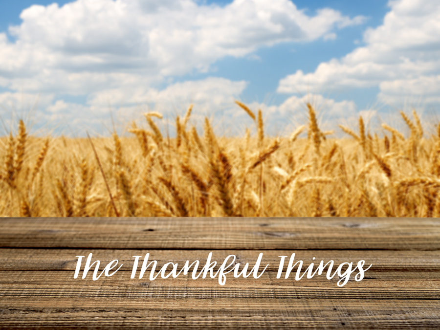 the thankful things